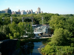 Everything You Need to Know About Shakespeare in the Park 2013